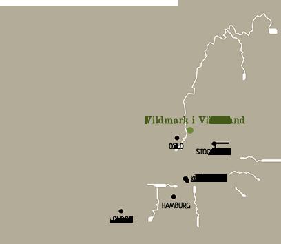 mötesplatsen värmland Arvika